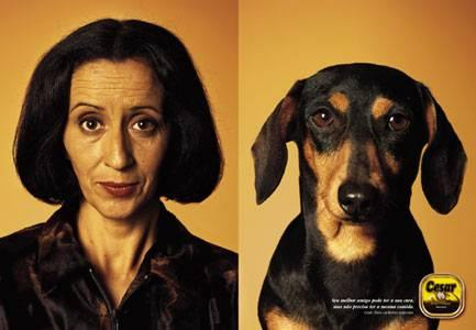 Собаки и люди так похожи!