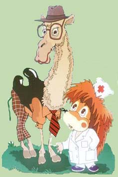 Весёлые истории с животными - юмор