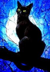 Кошкам всегда приписывали необычные сверхъестественные способности