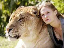 10 самых невероятных гибридов животных