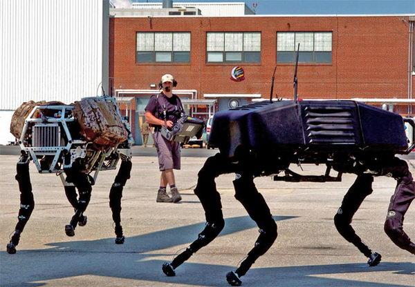 Тварини-роботи