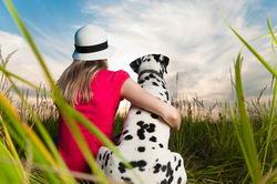 Статья защищающая животных может быть ужесточена