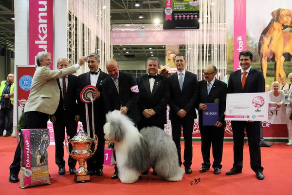 World Dog Show 2013