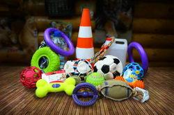 Игрушки для зверей Ленинградского зоопарка