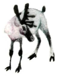 Молодой олень