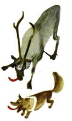 Лось гоняет собаку