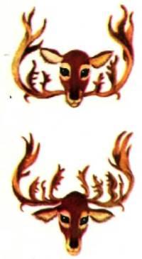 Головы оленей с рогами