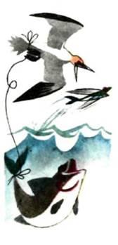 Чайка-поморник таскает подвязанного веревкой за хвост кита